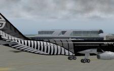 Air New Zealand Black Fern